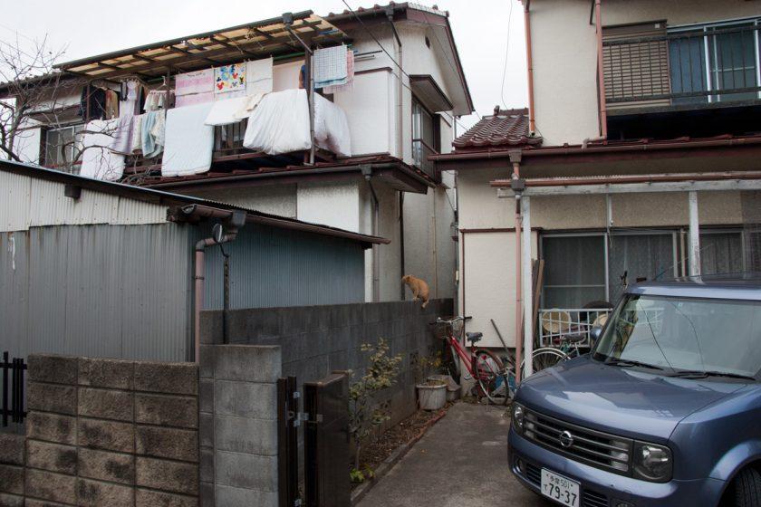 2012年2月17日・東京都立川市曙町・その3
